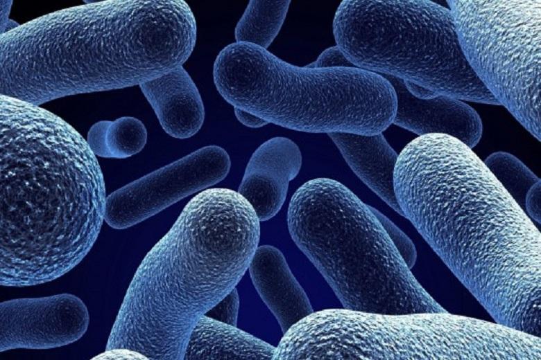 16-Quali-batteri-provocano-la-carie-570x350.jpg